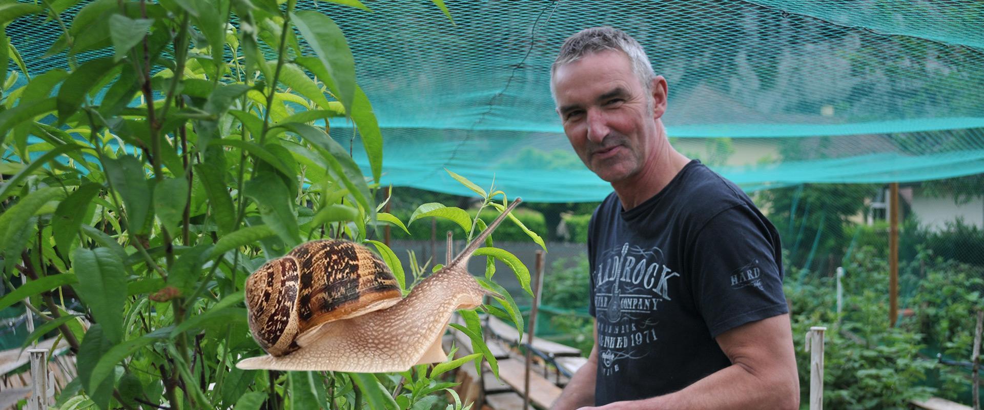 Les escargots de Dédé à Thoirette - Graines de l' Ain